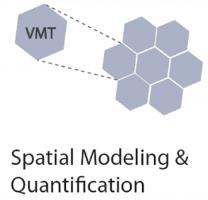 VMT Spatial Modeling.png