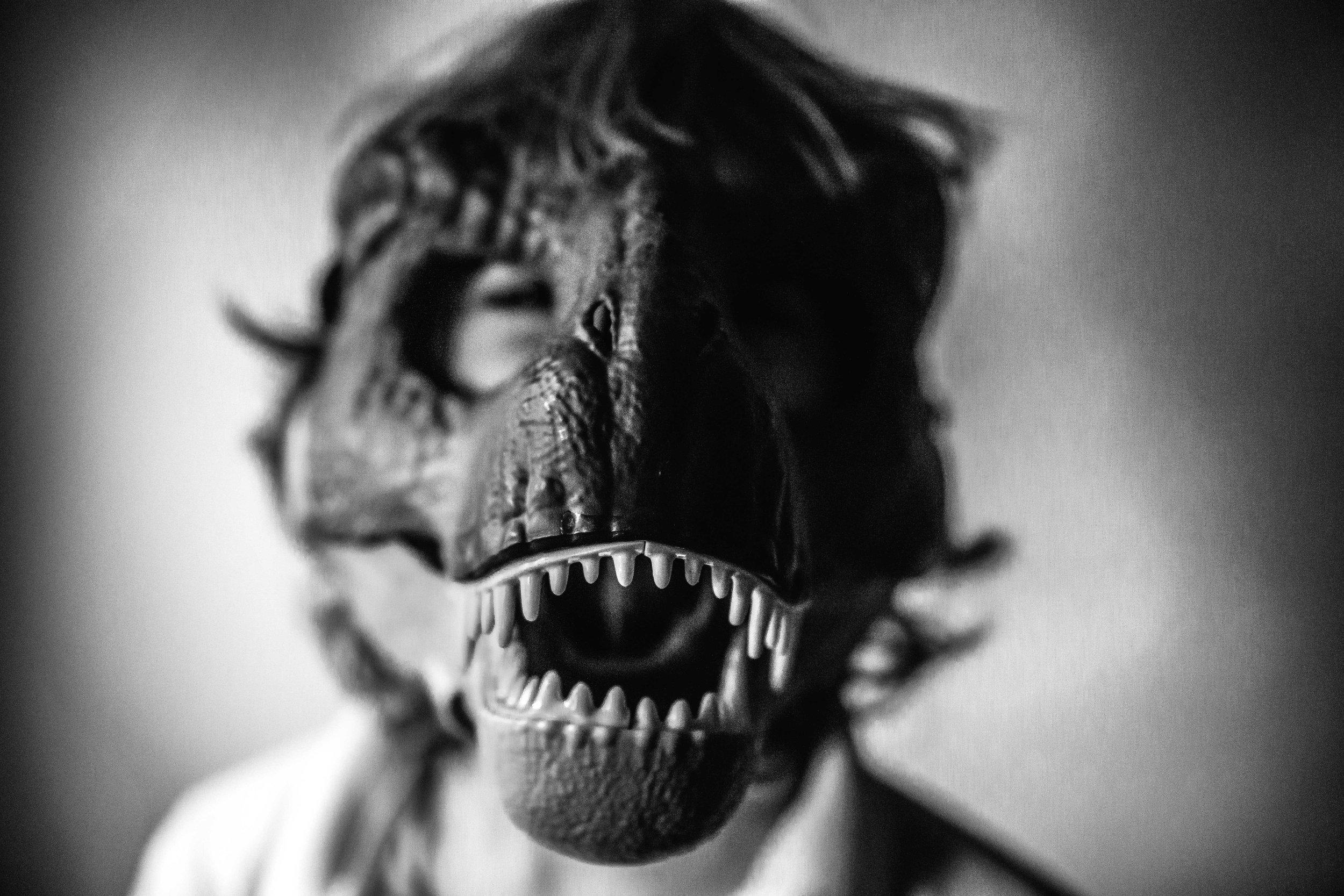 Inner Dinosaur