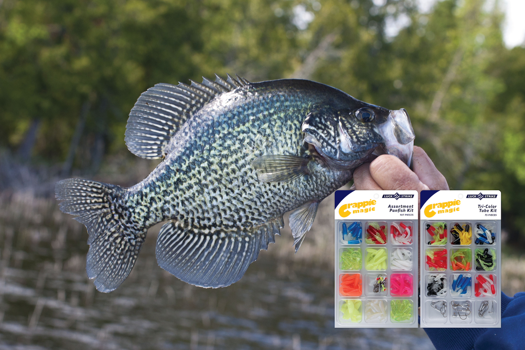 Crappie Banner.png