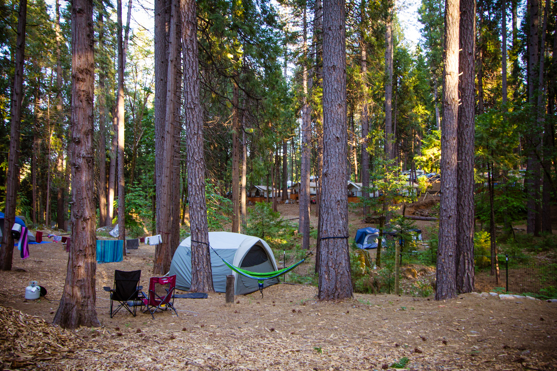 Inntown Campground, photo courtesy of Erin Thiem