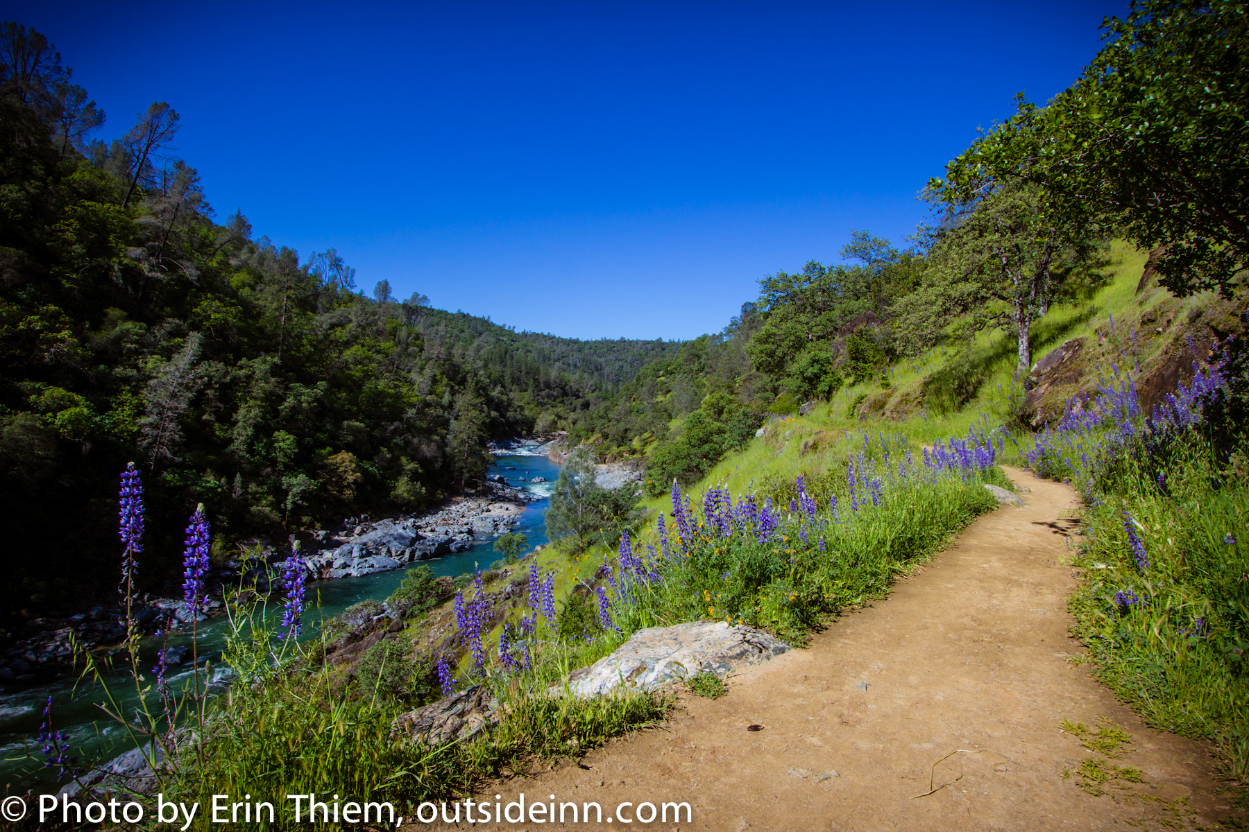South Yuba River, photo courtesy of Erin Thiem