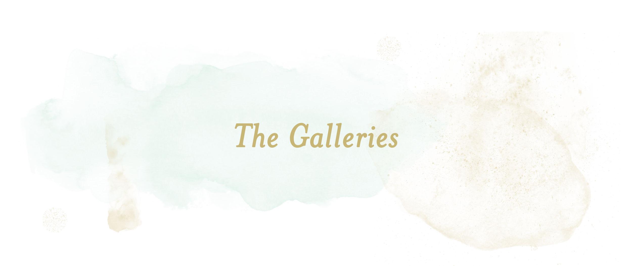 thegalleries_maryngraves -2.png