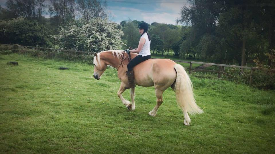 "Bridle-less riding is a ""by-product"" of our training! It is all about having fun and playing with your horse. As we do not rely on the reins and tension to move the horse we can learn to play without any tack!"