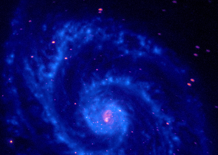 Sophie A. - Sophie's Whirlpool Galaxy