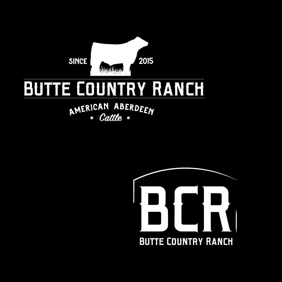 Primary and secondary marks, reversed, logo design for Butte Country Ranch.