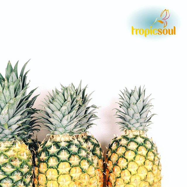 Pineapple is our most used ingredient!  It's used in five of our delicious smoothies 🍍🍍🍍🍍🍍 That's because it's an excellent source of vitamin C which helps boost your immune system and allows your body to develop a resistance against infectious agents.