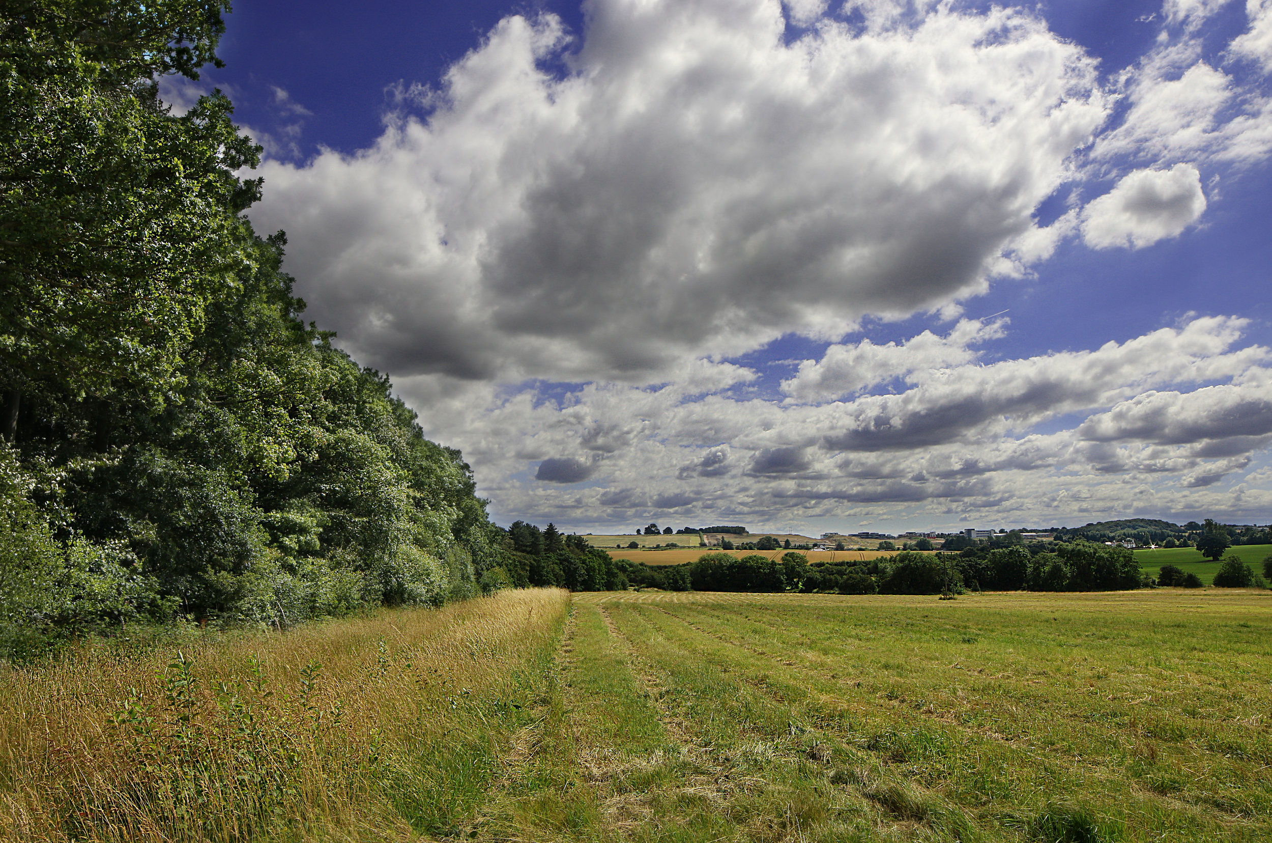 Leeds East, part of Leeds Country Way. Canon 70D, Samyang 14mm lens, three photos combined so that I could balance the exposure of the sky and the landscape