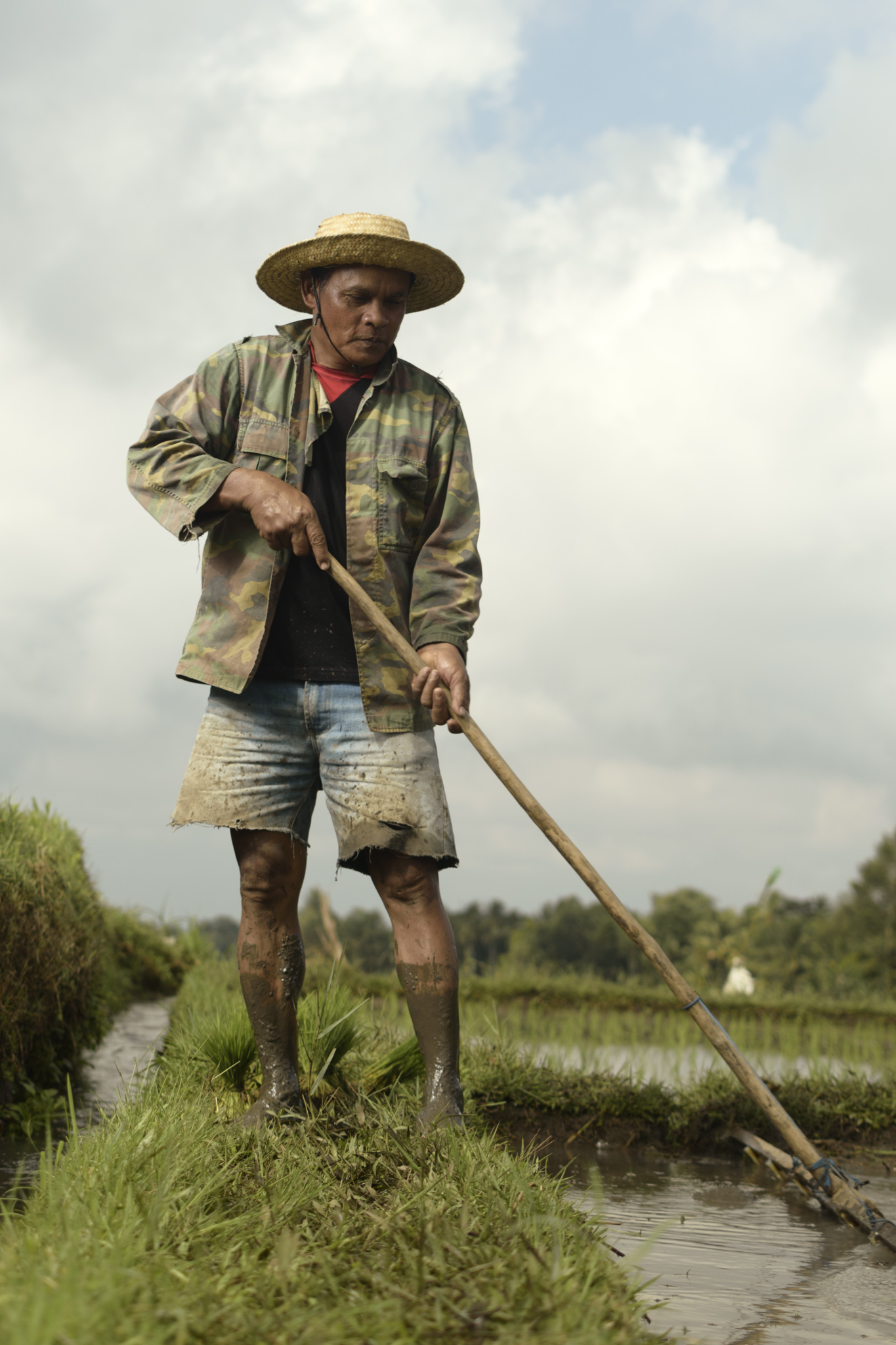 A rice farmer rakes a section of the rice fields of Bali.