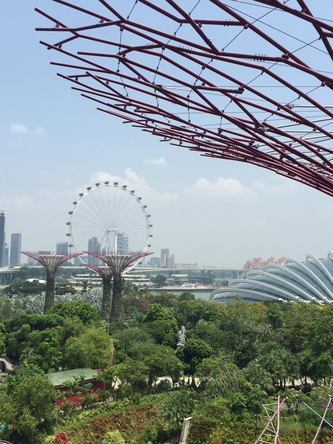 Singapore_4472 cropped.jpg