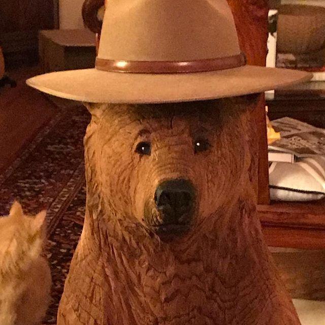 Gordon!  The latest Bear Vista Marketing mascot.