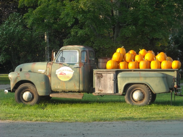PLACE HOLDER FOR PHOTO OF PICKUP TRUCK WITH PUMPKINS.
