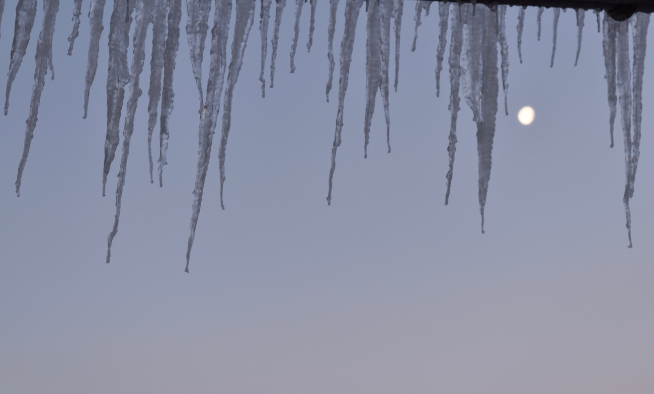 February icicles as the moon gets ready to set.