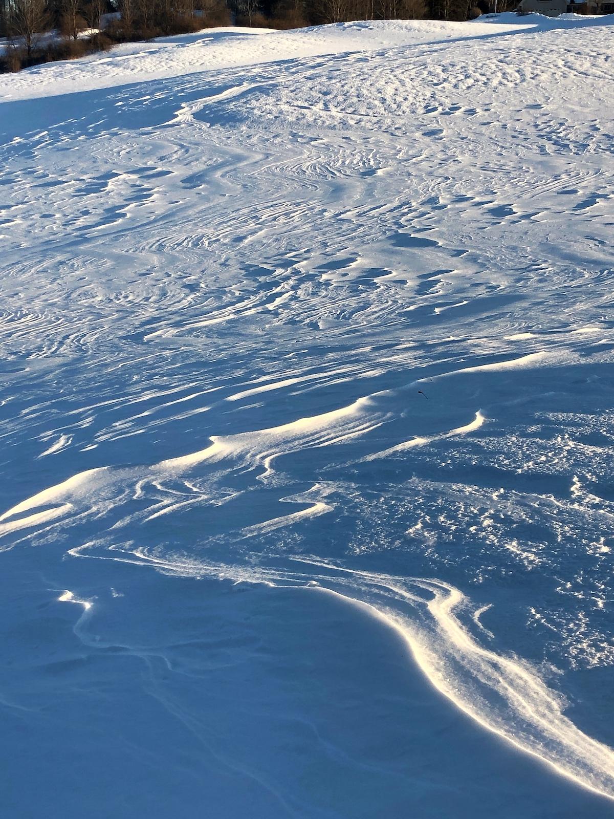 winter2019.jpg