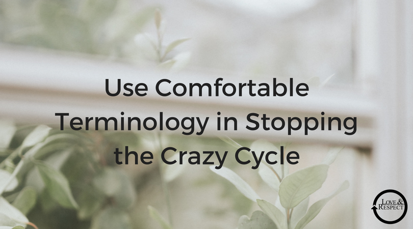 Use-Comfortable-Terminology-in-Stopping-the-Crazy-Cycle.png