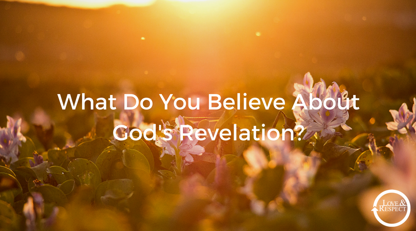 What-Do-You-Believe-About-Gods-Revelation_.png