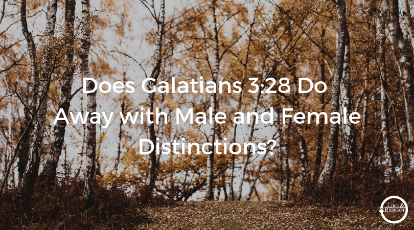 Does-Galatians-3_28-Do-Away-with-Male-and-Female-Distinctions_.png