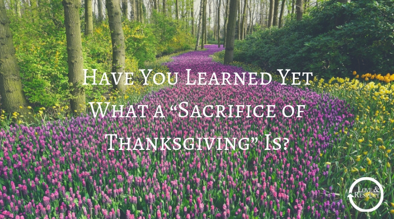 """Have You Learned Yet What a """"Sacrifice of Thanksgiving"""" Is"""