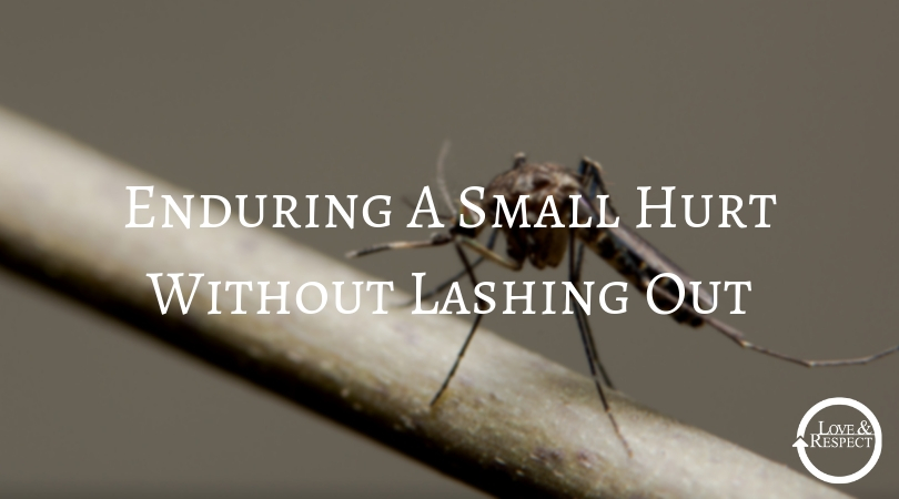 Enduring A Small Hurt Without Lashing Out