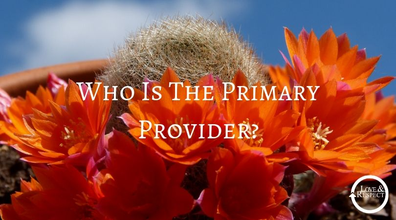 Who Is The Primary Provider?