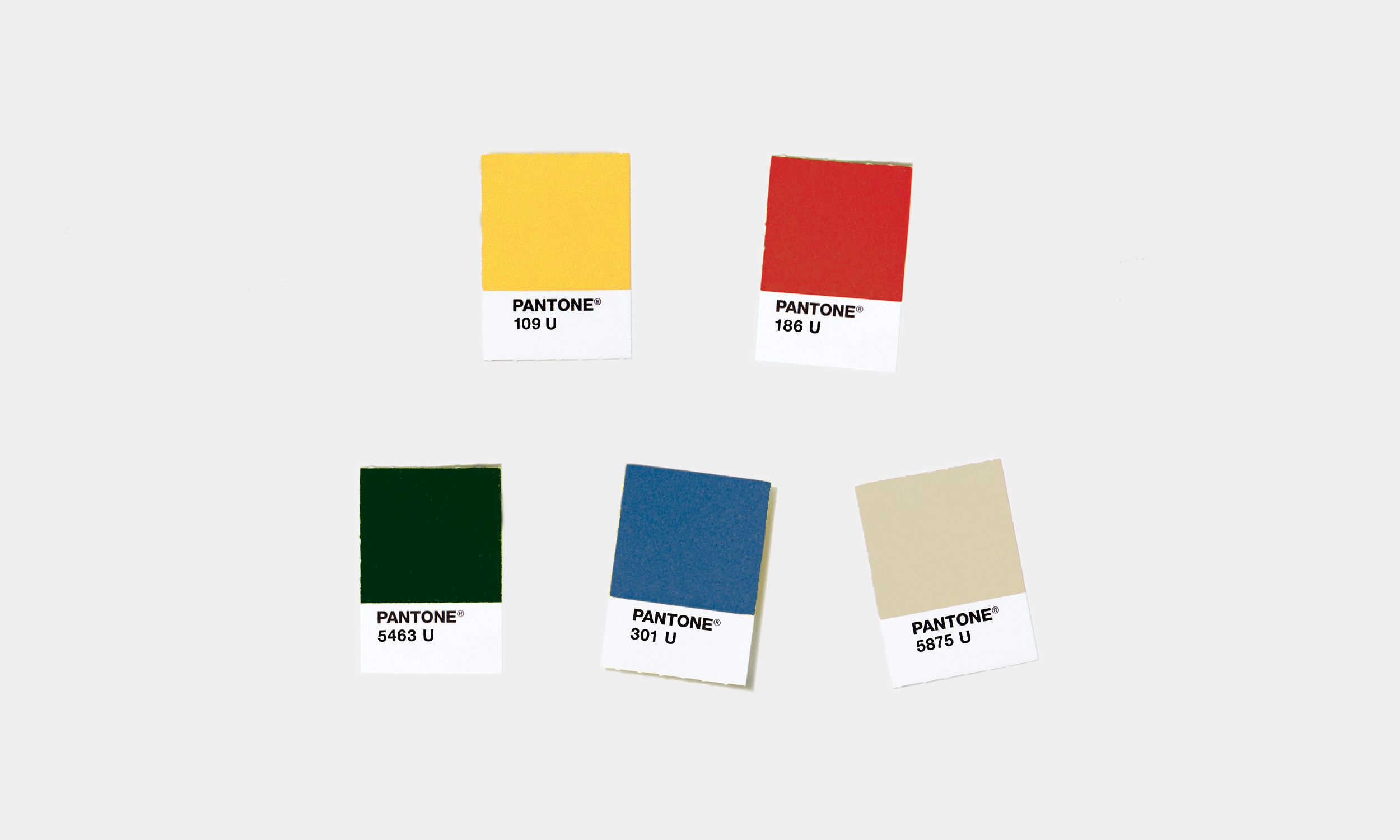 Ross Brewing Co. color palette by Knockout! Studio