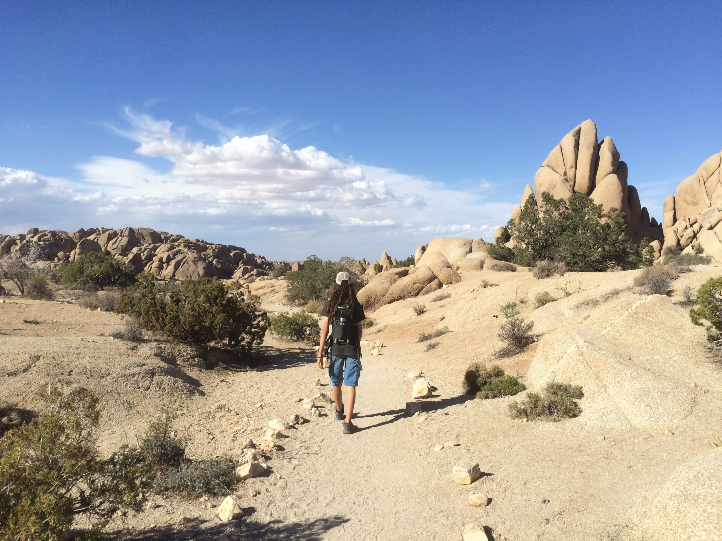 The trail system in Joshua Tree is both accessible and extensive.