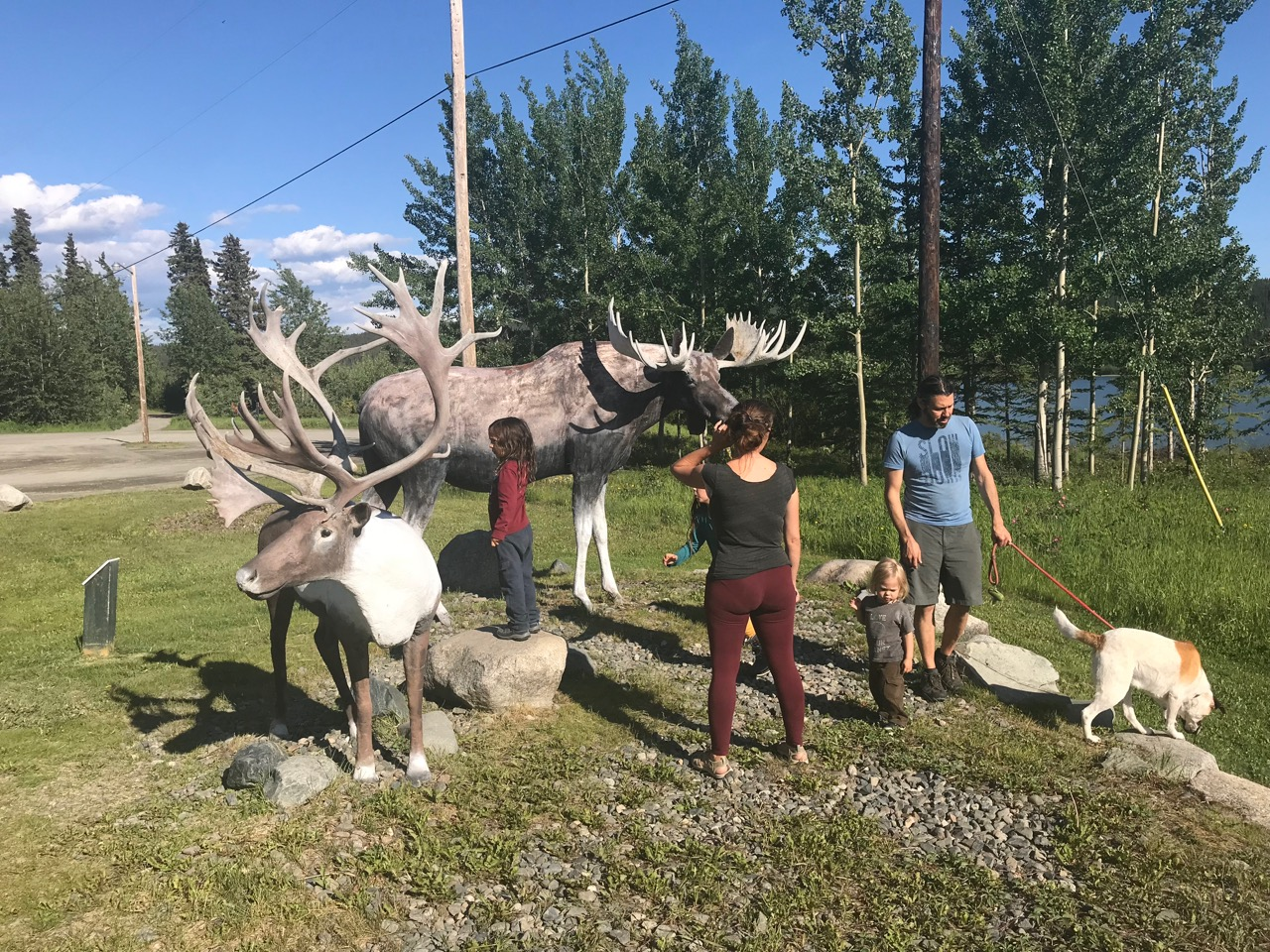 Even the fake moose are bigger than us!