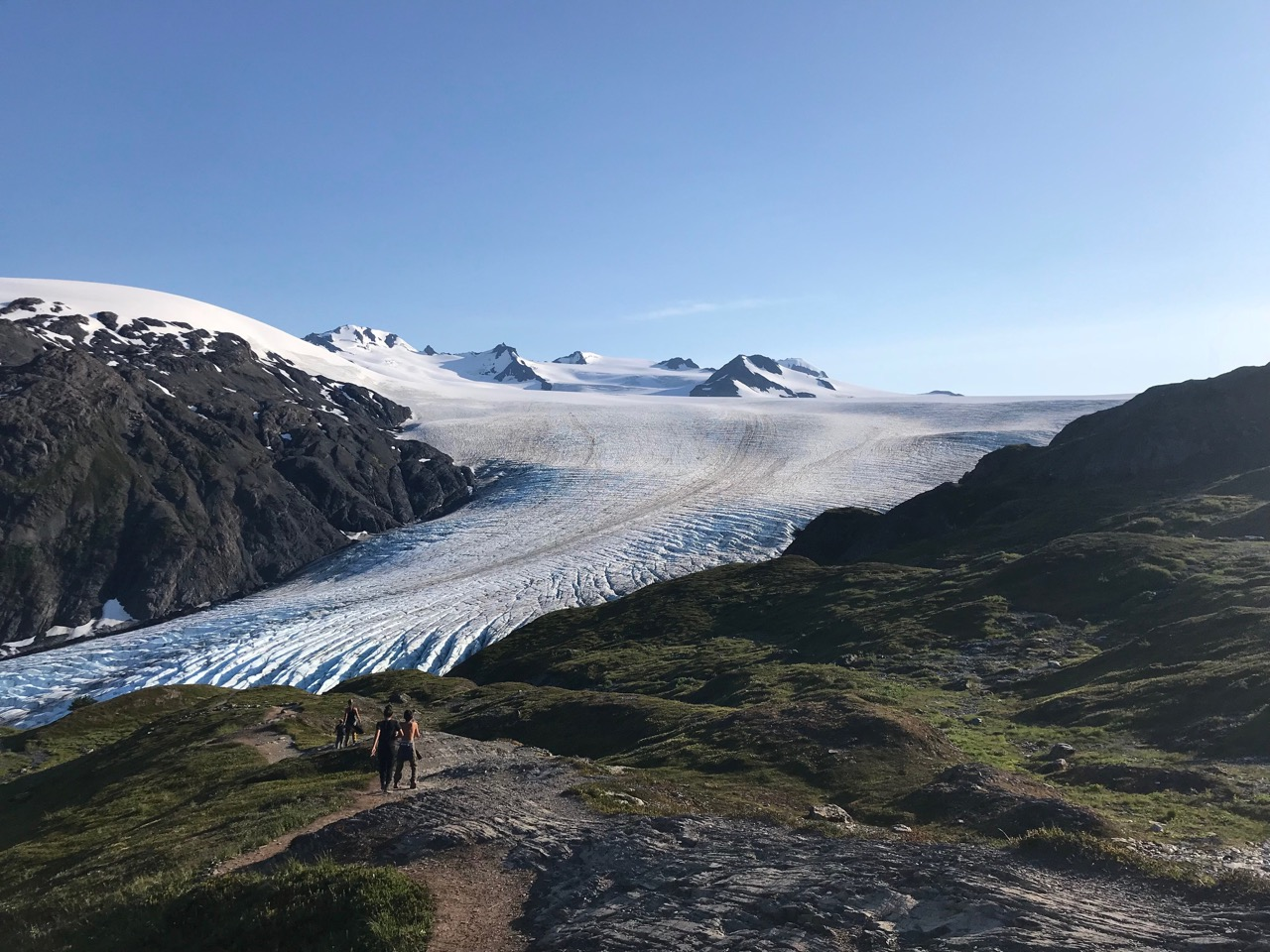 Exit Glacier in all its glory.