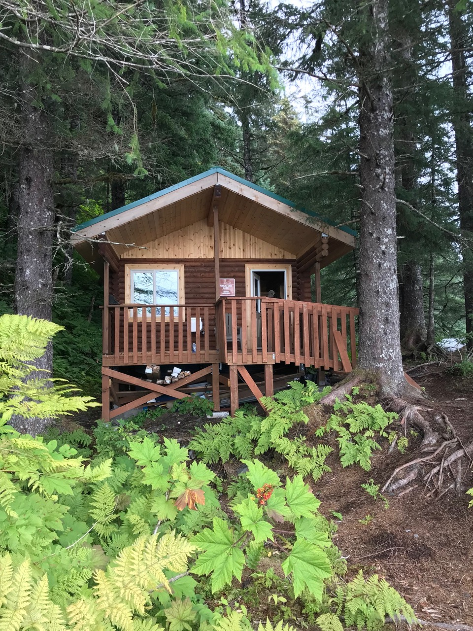One of several public-use cabins on the trail, which extends 7 miles out to Caines Head.