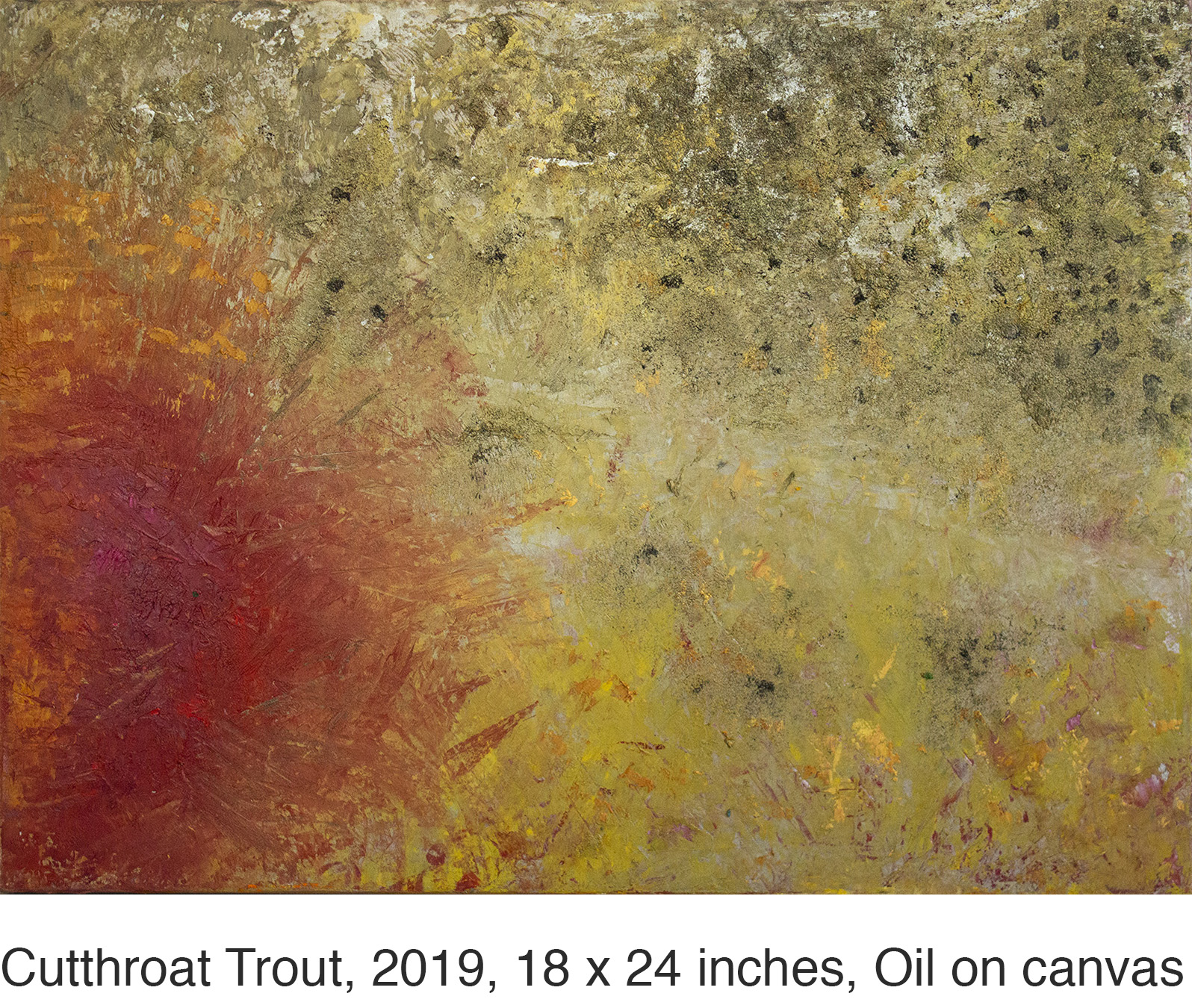 18x24_R_CutthroatTrout_2019_Krutick_Oil web caption.jpg