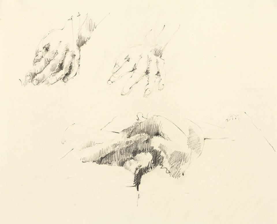 Hand & Arm Study, Graphite on Paper