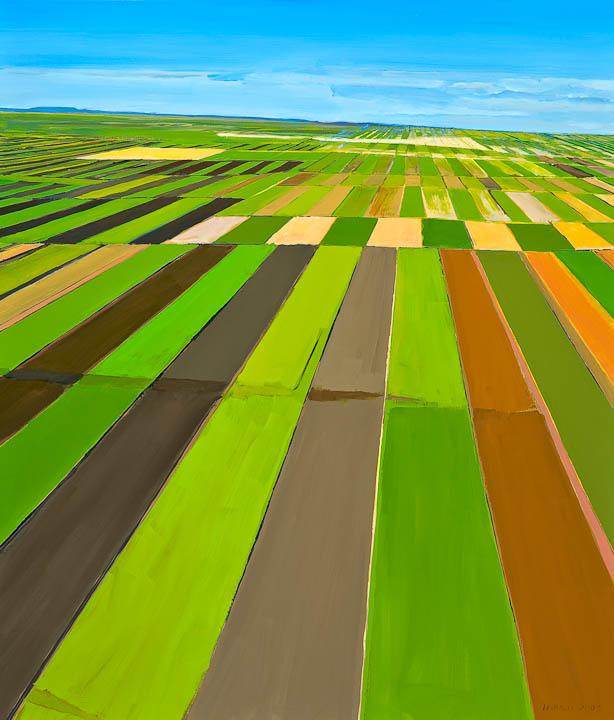 "Landable Fields, 42 x 36"", Oil on Canvas"