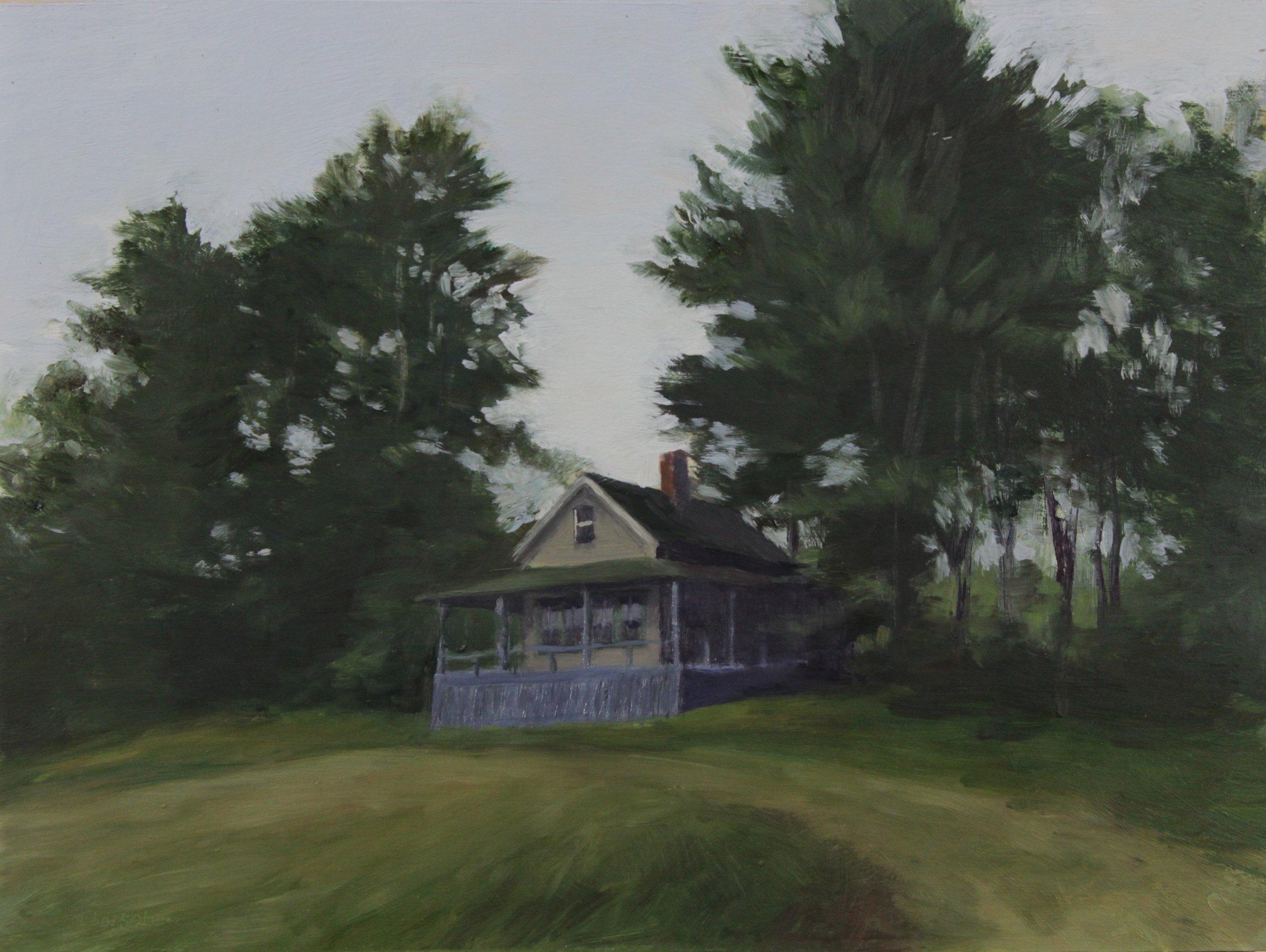 Cabin in Maine