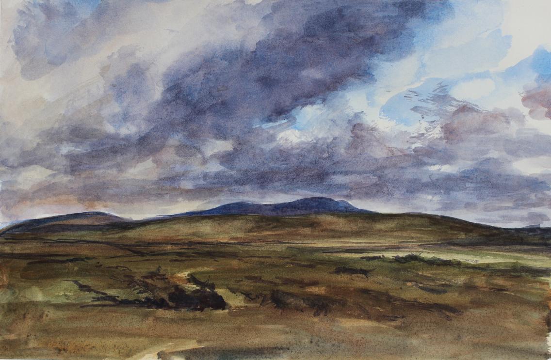 Doogort East Bog, Achill, County Mayo, Ireland
