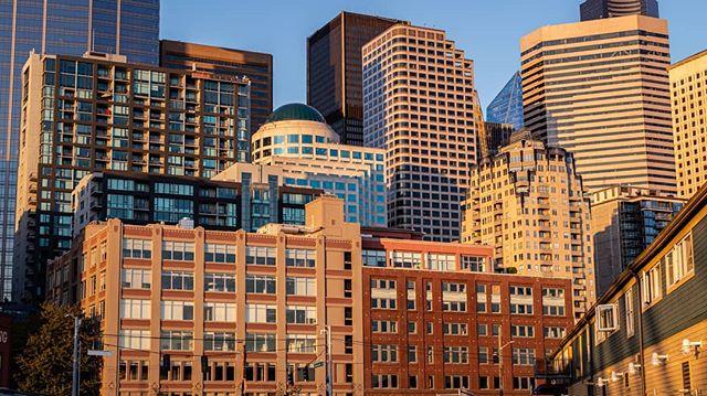 Seattle's Building Blocks.