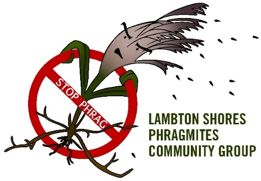 LSPCG small logo.jpg