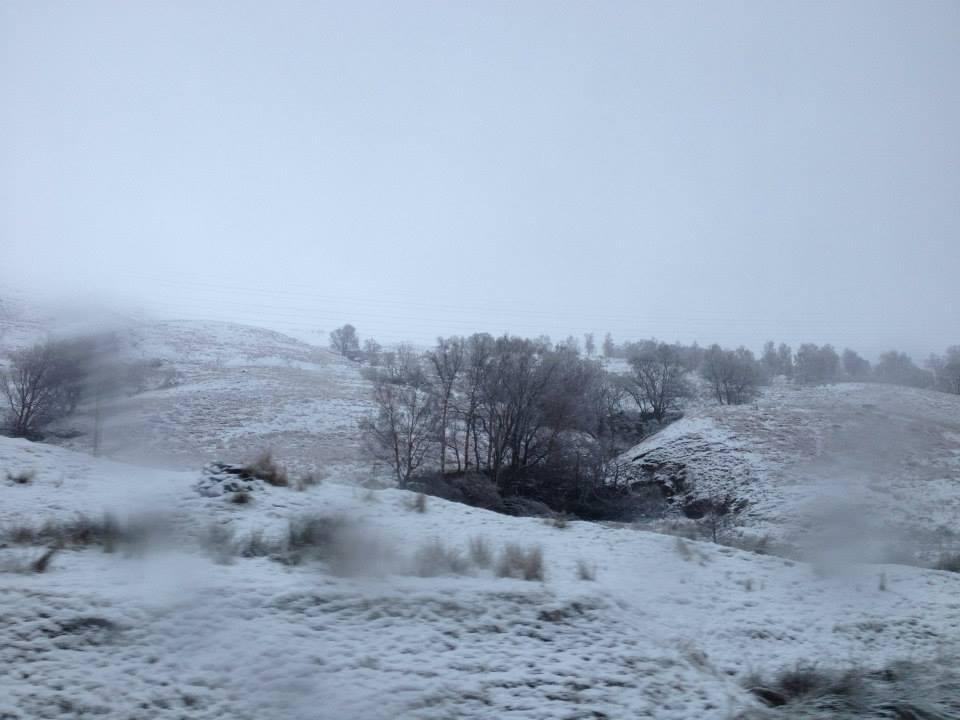 nick-snow.jpg