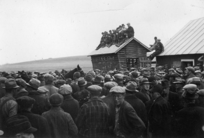 "Hundreds of farmers gathered for a ""penny auction."" During penny auctions, farmers organized together to bid pennies for foreclosed farms and intimidate urban and foreign investors from bidding higher (sometimes hanging nooses or carrying around guns as a show of potential violence). The point was to allow the farmer who'd lost their land to the bank to buy it back in the auction"