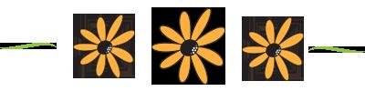 flower divider.png