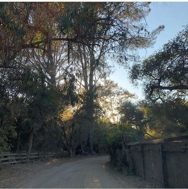 The drive to Art Farm
