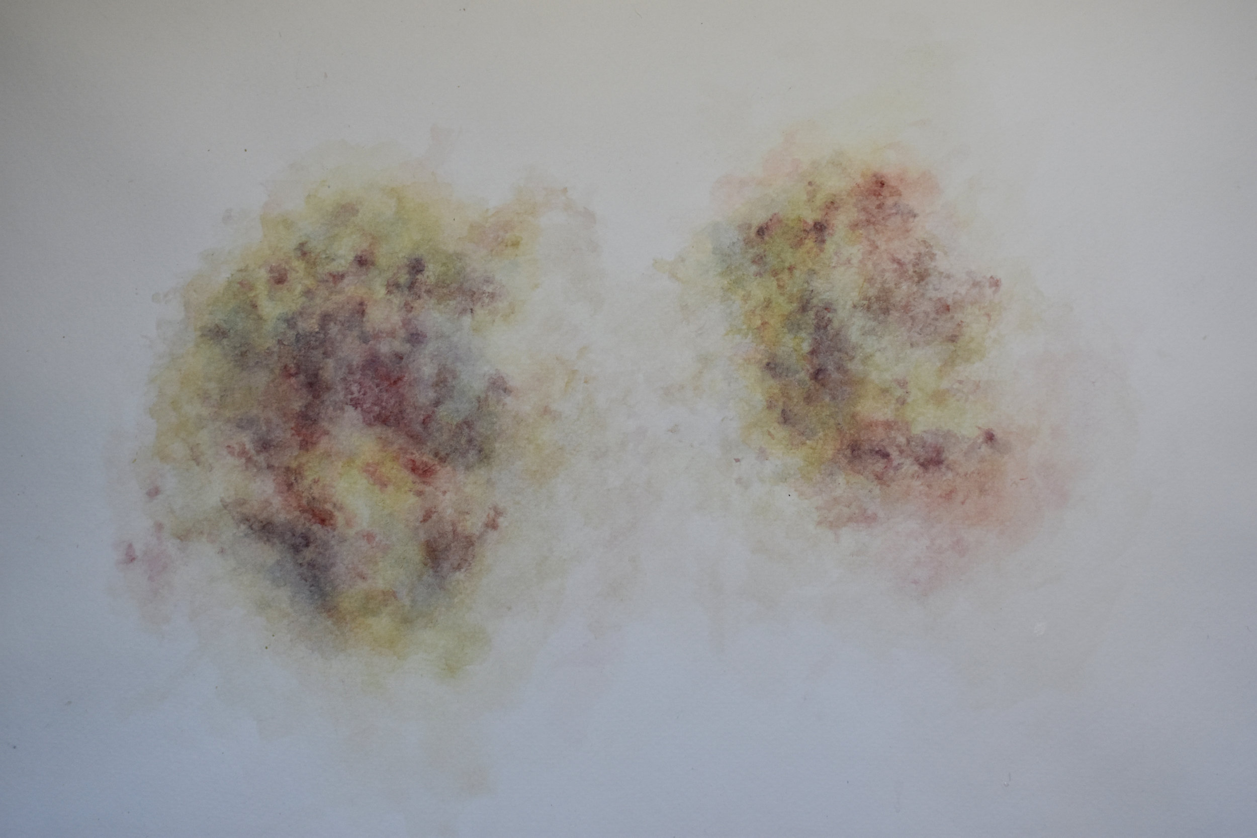 Bruise from Kait , Watercolor, 2018