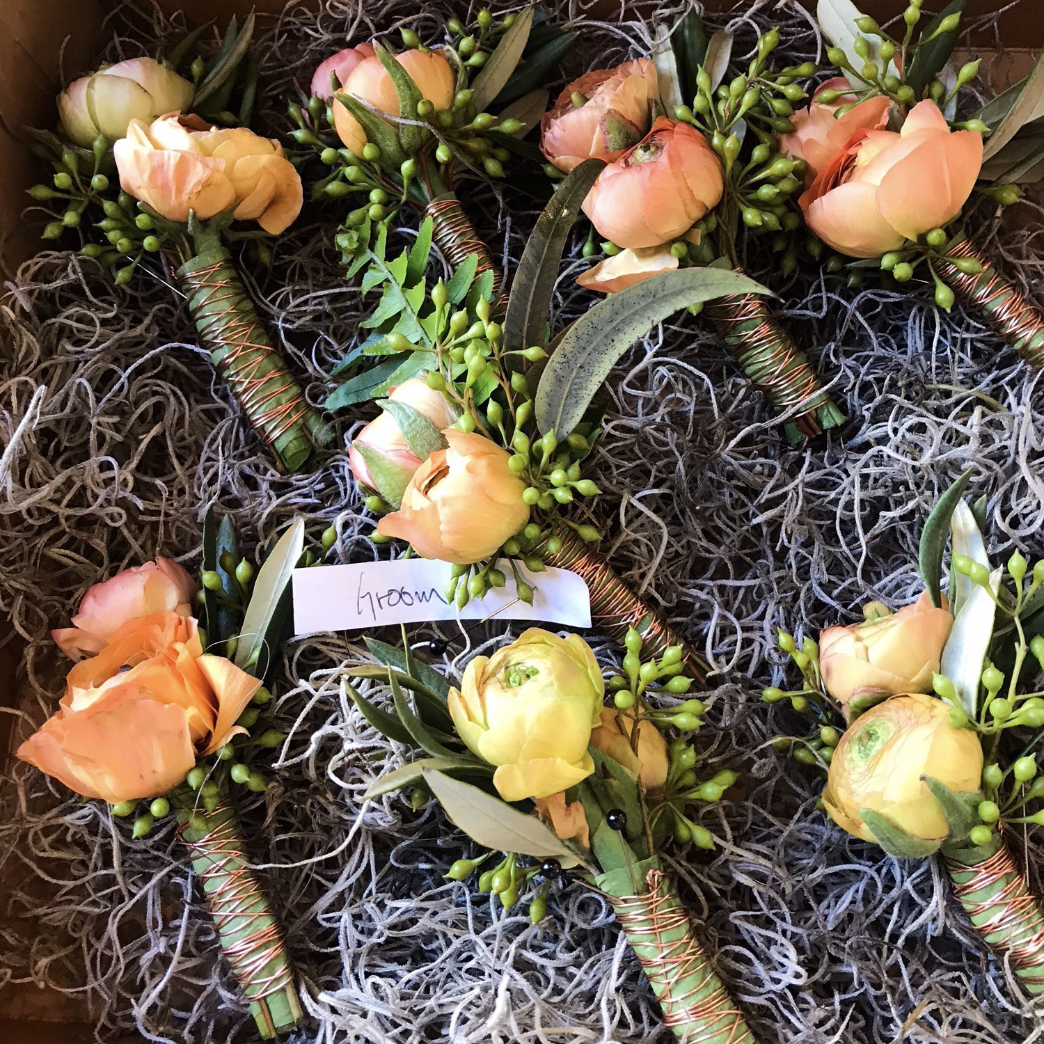 Tropical Blush Boutonnieres