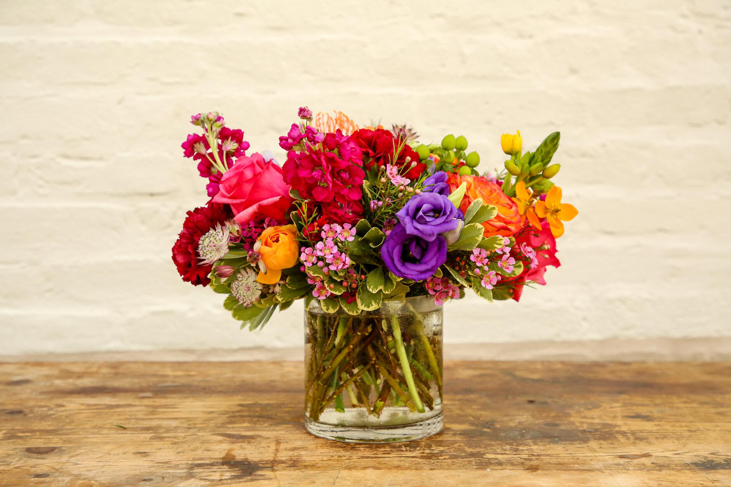 Palate_Flower+BarShoot_Aug282019-21.jpg