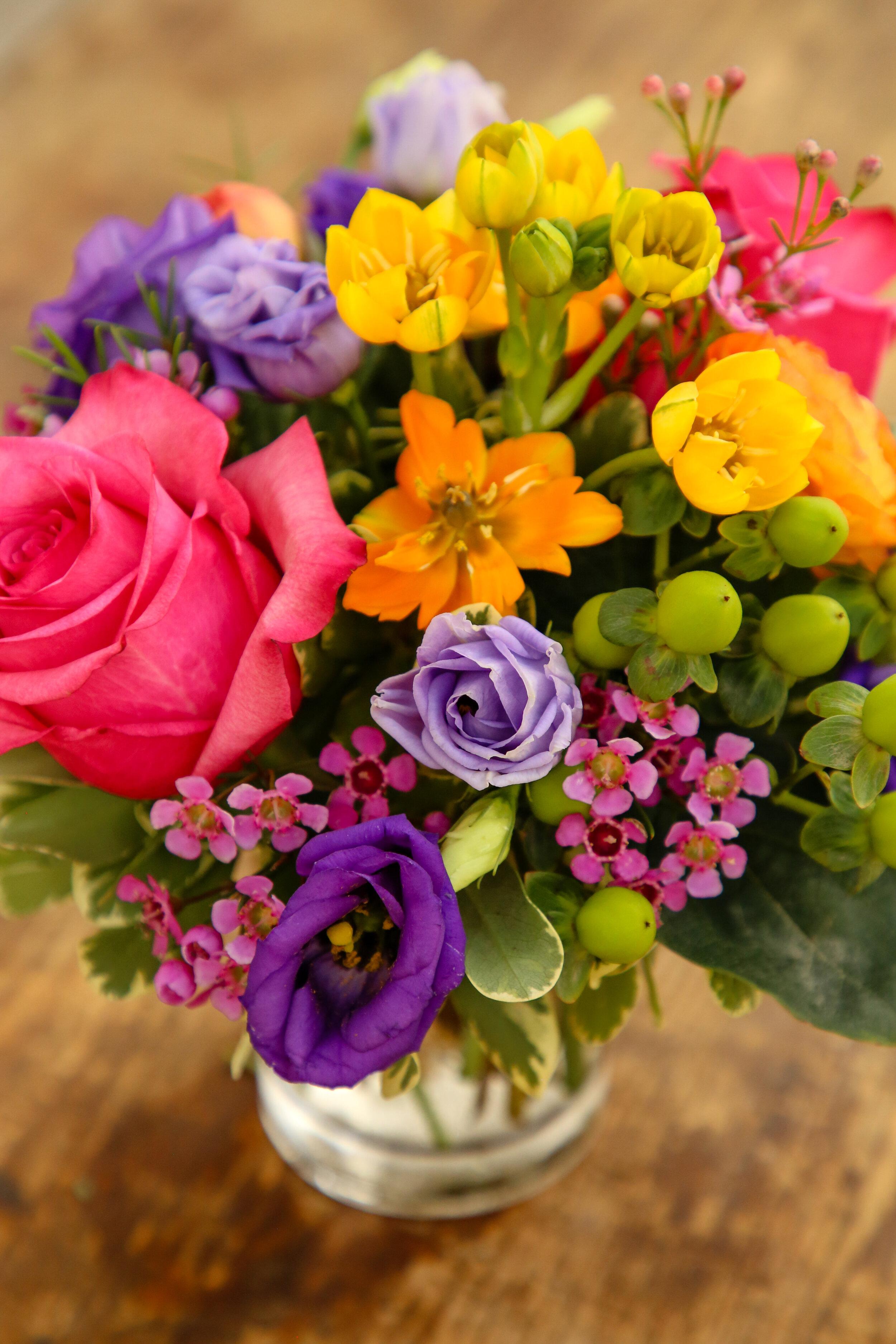 Palate_Flower+BarShoot_Aug282019-8.jpg
