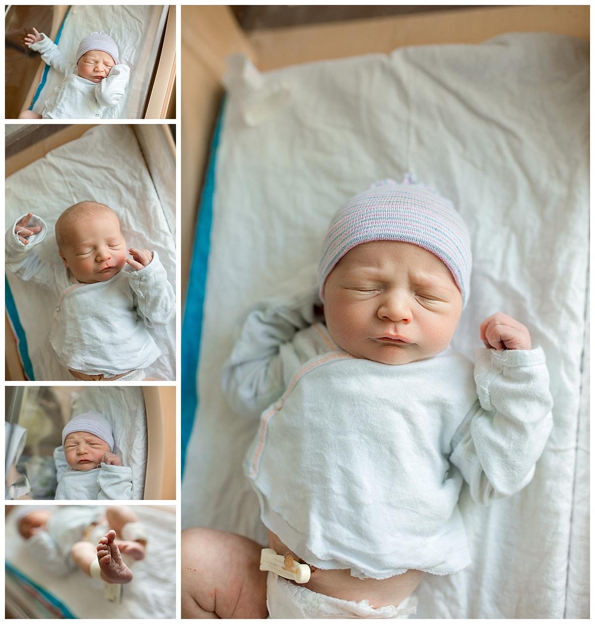 Gainesville Newborn.jpg