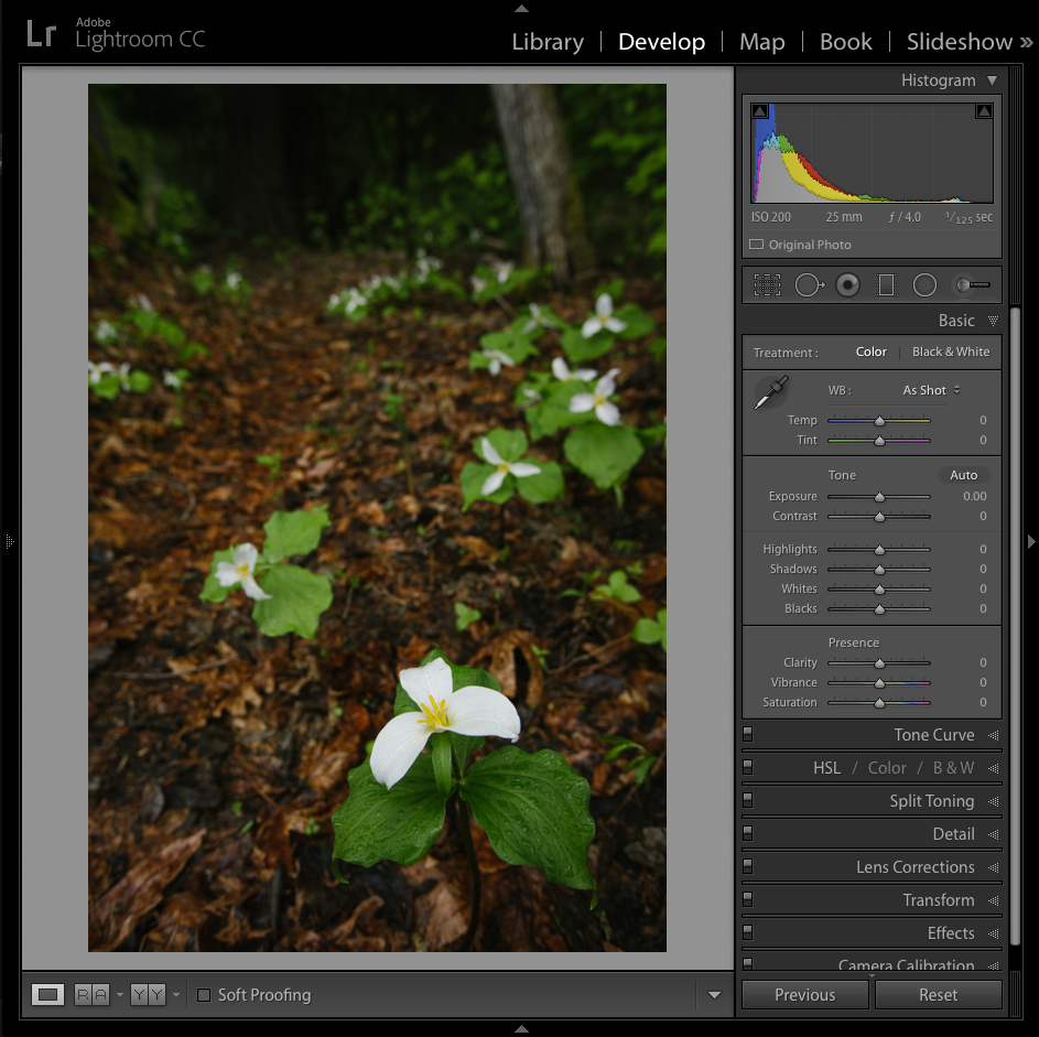 Adobe-Lightroom-Training.jpg
