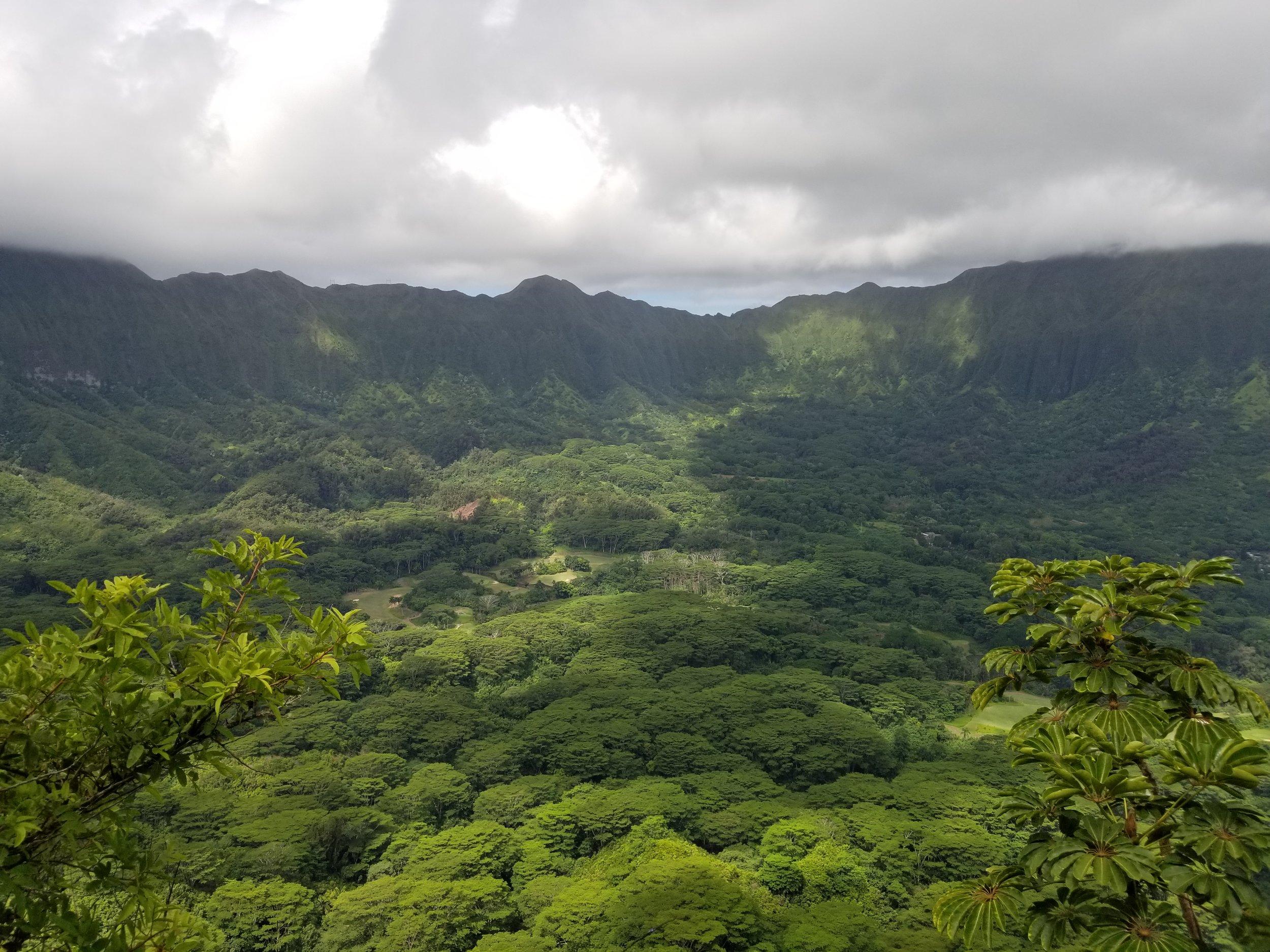 best-hikes-in-oahu-olomano-trail-polywander