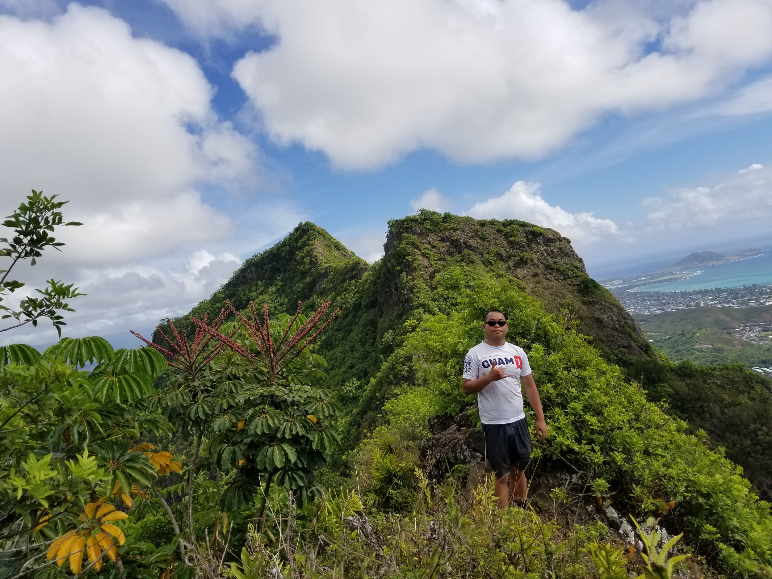 olomano-trail-hikes-in-oahu-polywander