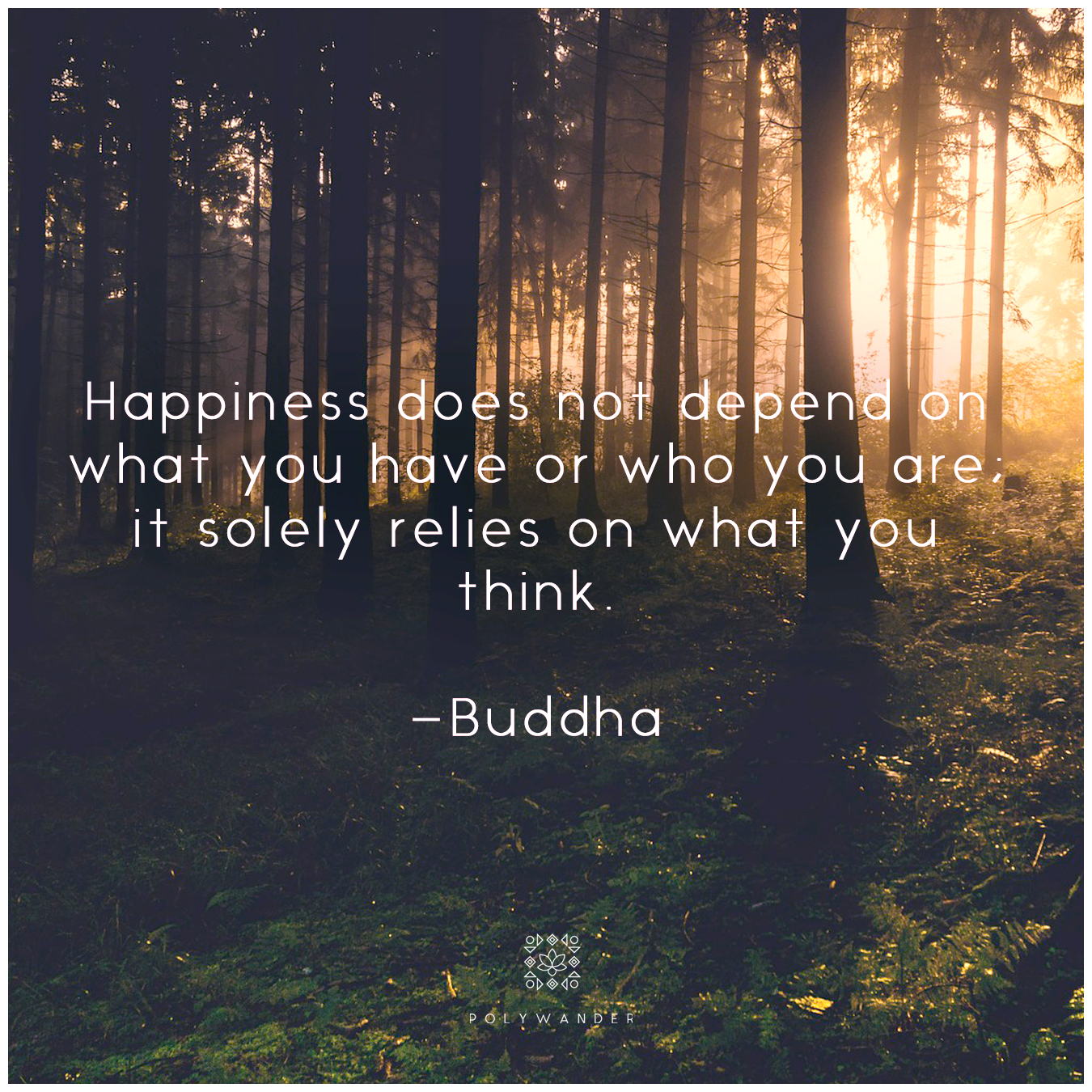 """Happiness does not depend on what you have or who you are; it solely relies on what you think."" Buddha"
