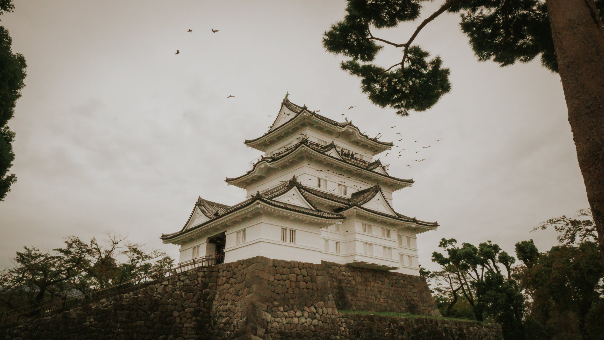 what-to-do-in-odawara-castle-polywander