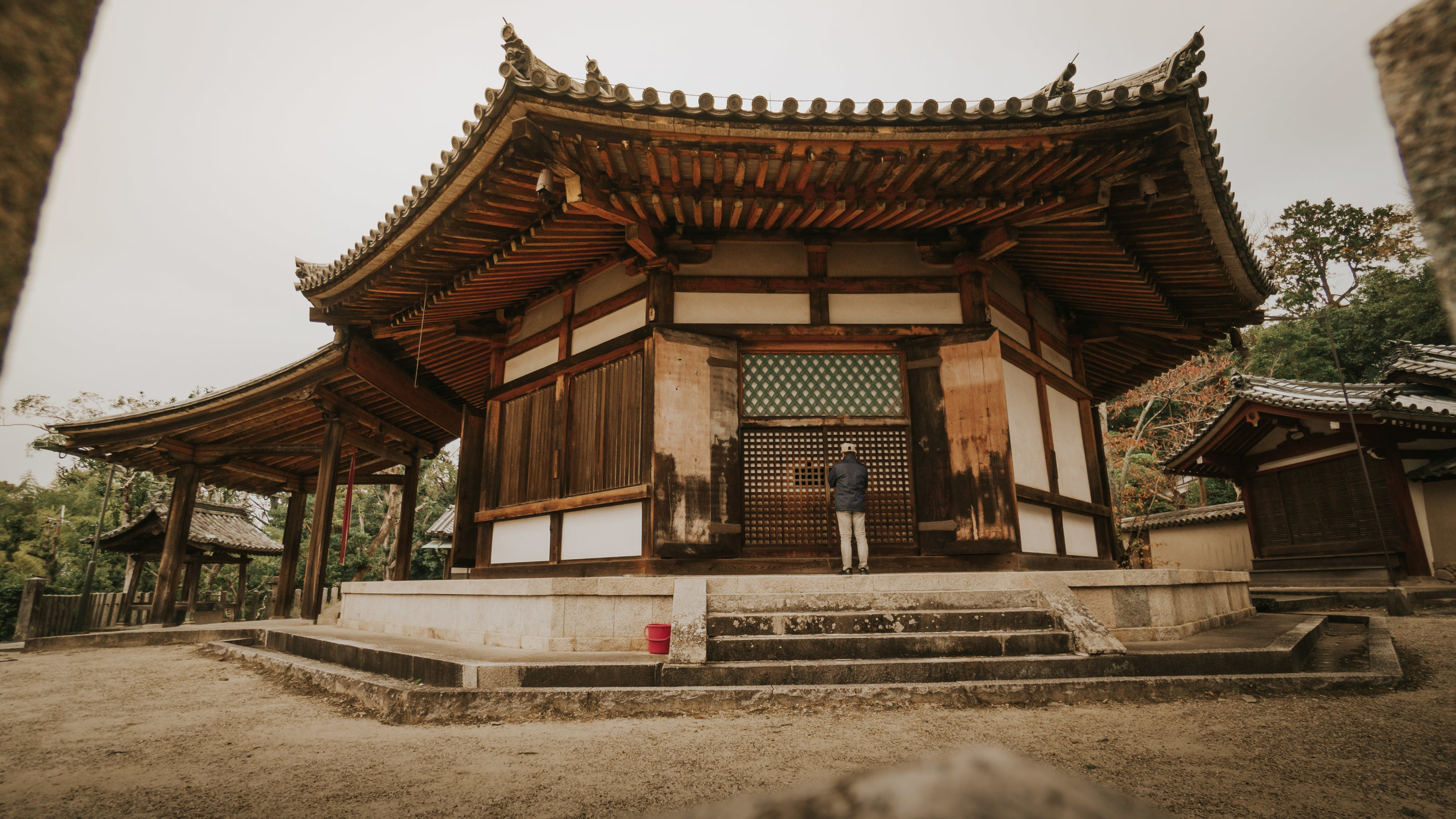 polywander-what-to-do-in-nara-japan-on-a-budget (15).jpeg